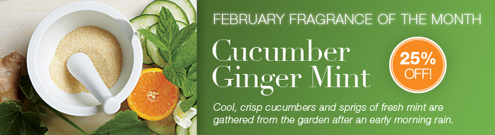 PartyLite February 2013 Fragrance of the Month - Cucumber Ginger Mint!